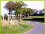Parcours_la_panoramique_041