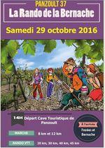 29-10-2016_rando_de_la_bernache_panzoult